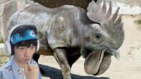 动物混合模拟器,鸡加大象会变成什么?