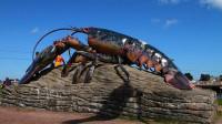 世界上最大的龙虾,体长1.2米重40斤,老外的做法却太可惜了