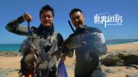 墨尔本潜水捕猎海鲳和三刀鱼,肉质细嫩放进嘴里会化掉
