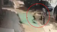 男子抱走3岁男童狂奔被制服 警方:无法与嫌疑人正常沟通已拘留