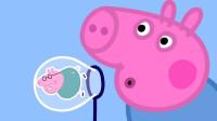 超好笑!猪爸爸怎么帮小猪佩奇吹出大气球呢?结果吹破了吗?儿童亲子游戏玩具故事
