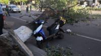 北京遭遇八级以上大风 外卖小哥被大树砸中离世