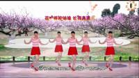 阳光美梅原创广场舞《花一样的姑娘 (DJ版) 》简单32步-编舞:美梅