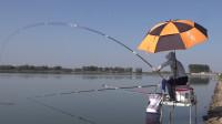 白条游钓湾孙水库,频频黑漂不中鱼,换了钩子后连杆翘嘴鱼