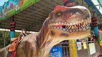一起去恐龙园认识霸王龙等6种大型恐龙