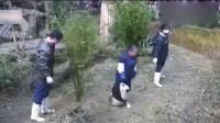 """全世界都羡慕的一个女人,专治各种不服的熊猫,号称江左""""一霸""""!"""