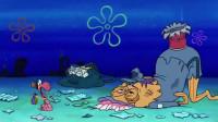 虫子为什么会选择安家在海绵宝宝身上?这里终于给出了答案