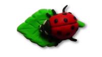 儿童玩彩泥:培乐多制作橙色七星瓢虫