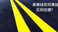 """单黄线""""和""""双黄线""""的区别到底在哪?女司机不懂,驾照分扣完了"""