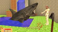奥特曼:纳克星人怎么在给鲨鱼喂辣椒呢?