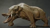 你见过六个牙的大象吗?史前的大象模样有多奇葩?