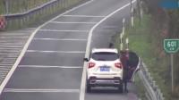 一男四女在高速上做这种事情,交警实在看不下去了,丢人
