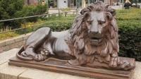 """中国古代并没有狮子,那为啥到处都有""""石狮子""""雕像?原因很现实"""