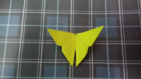 创意手工:折纸教程视频,简易又美丽的折纸蝴蝶