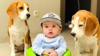 都说狗狗是小宝宝最好的伙伴,看完这个视频我真的相信了
