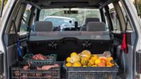 车后备箱放几箱水果被罚款?车主:是箱子不能用还是水果不能吃?