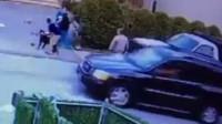 男孩和其他小朋友在路边玩耍 竟然遭到一只比特犬袭击
