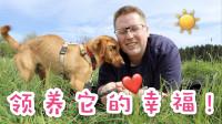 我在德国的宠物收容所当了一天的志愿者!