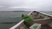 阿雄出海去收鲈鱼扣,拉起一条六七斤的大鲈鱼,赚了800多块