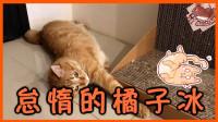 【巧克力】『橘子冰的日常』- 怠惰的橘子冰