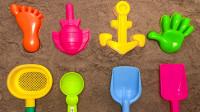 用沙子DIY仿真模型玩具  儿童学习颜色视频