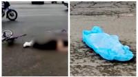 男子驾货车路口转弯与自行车碰撞后逃逸,骑车女子被直接爆头