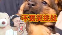 饺子vlog:笑一次喝一口醋,整个人都酸了,吃饺子再也不蘸醋!