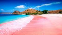 以粉色沙滩出名的度假海岛,将于2020年闭岛,只为保护这稀有国宝!