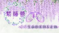 螺蛳语文-七年级下册-第17课《紫藤萝瀑布》宗璞
