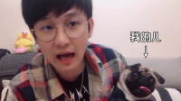 四川方言搞笑视频:巴哥犬也要过六一儿童节?金花哥这口音真搞笑!