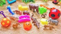 和斑马大象等小动物玩游戏