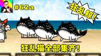 ★猫咪大战争★狂乱鱼猫首次华丽登场!所有的狂乱猫都集齐啦!★62a