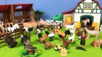 参观农场认识奶牛小马等动物