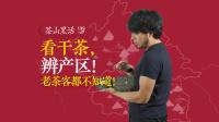 茶山黑话 139 辨析普洱茶新四大产区(二)