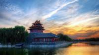 北京故宫的100多只猫,个个是保安,没有一只是吃白食的