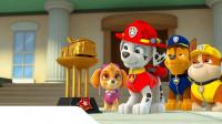 哇哦!汪汪队狗狗们带来的玩具里面是什么呢?趣味玩具故事