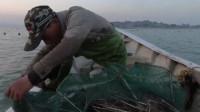 堆在地笼里的海鲜打成一团,阿雄出海收地笼,海鲜抓得真过瘾啊!