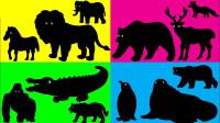 帮助小动物们斑马大象寻找生活的地方