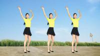广场舞《好想把你留在梦里》好听的音乐 简单健身操!