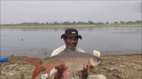 一个不注意鱼竿就被拖进水中,泛起巨大水花,这鱼得有20斤!