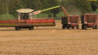 科技之最大联合收割机小麦收获
