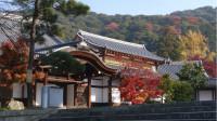 日本无意间帮中国解决了一个30年的大难题,美破口大骂