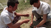 实拍农村2亩鱼塘放30条标鱼,中一条得20元,你们钓过标鱼么?