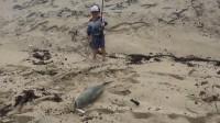 这才是钓鱼高手,3岁小孩海边钓鱼,钓到鱼后笑得真灿烂!