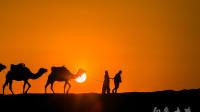 一个撒哈拉的故事