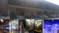 这才是北京最大鱼市,高端水族店,普通小店,观赏鱼玩家的乐园