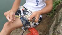 这样的小沟渠最适合用筏杆,小伙子第一次用筏杆野钓上鱼不停!