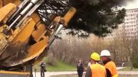 老外移植一棵大树,这操作方式真的牛,机械化设备太先进了!