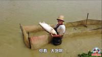 全员出动捉大头鱼,一条重达30斤,得用这个办法才能将它逮住
