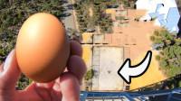 45米高空扔鸡蛋,怎样才能完好无损接住?老外的方法有点意想不到